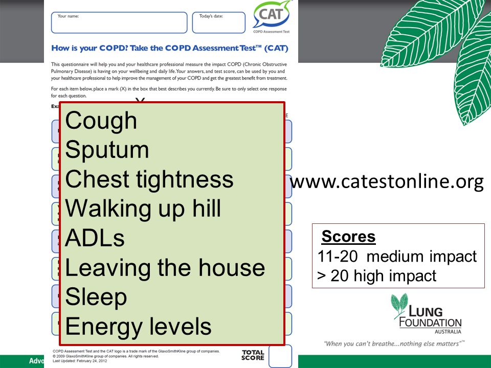 www.catestonline.org Cough Sputum Chest tightness Walking up hill ADLs Leaving the house Sleep Energy levels Scores 11-20 medium impact > 20 high impact
