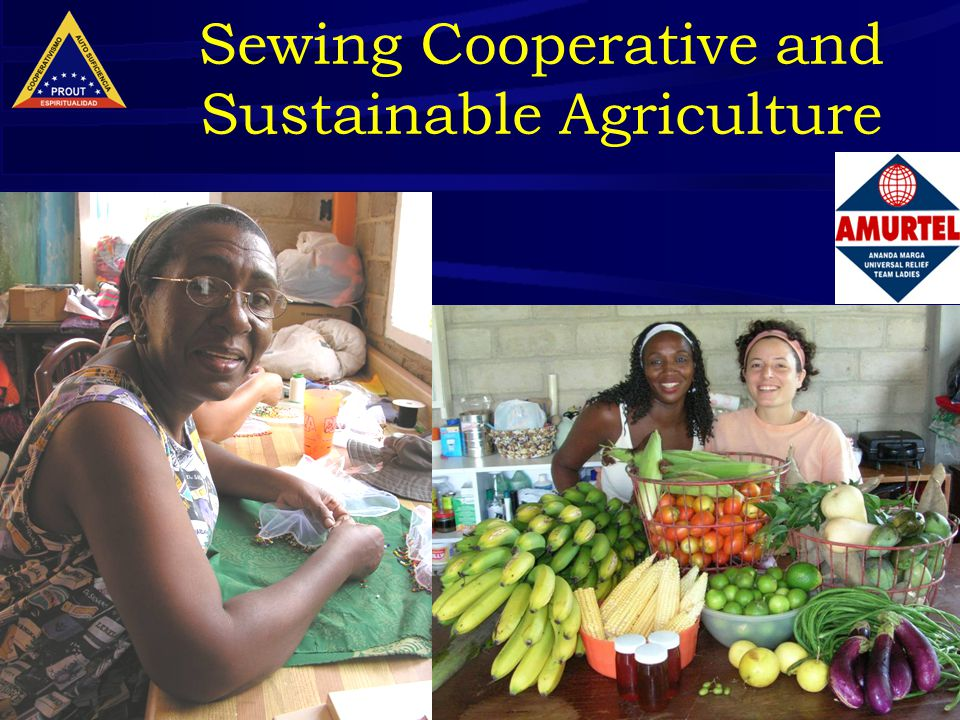 14 Sewing Cooperative and Sustainable Agriculture