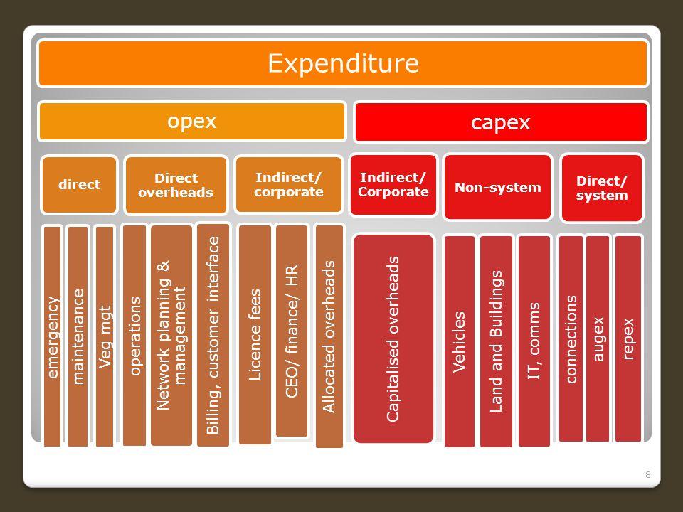The Australian Energy Regulator Expenditure Forecast Assessment