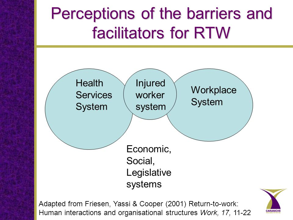 Perceptions of the barriers and facilitators for RTW Health Services System Workplace System Injured worker system Adapted from Friesen, Yassi & Cooper (2001) Return-to-work: Human interactions and organisational structures Work, 17, 11-22 Economic, Social, Legislative systems