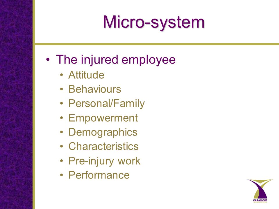 Micro-system The injured employee Attitude Behaviours Personal/Family Empowerment Demographics Characteristics Pre-injury work Performance