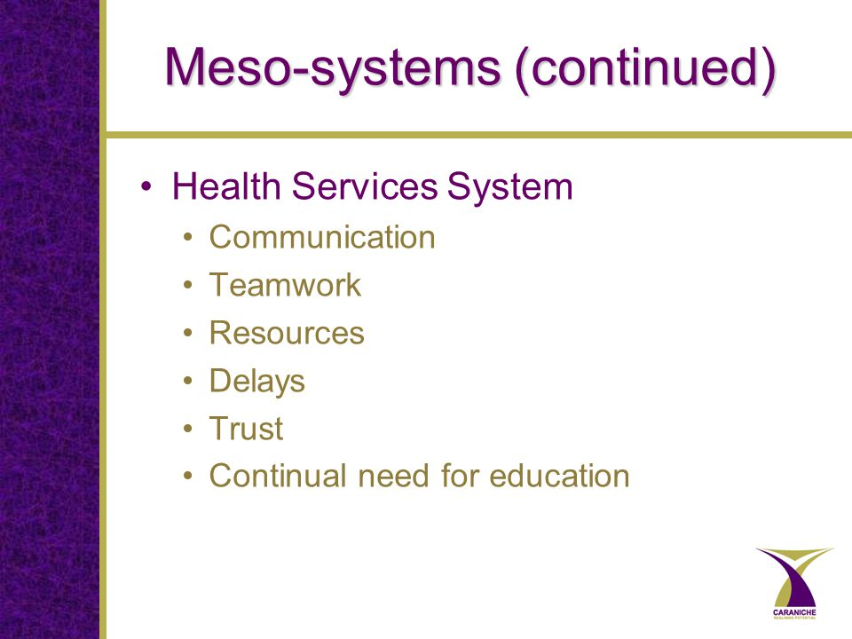 Meso-systems (continued) Health Services System Communication Teamwork Resources Delays Trust Continual need for education