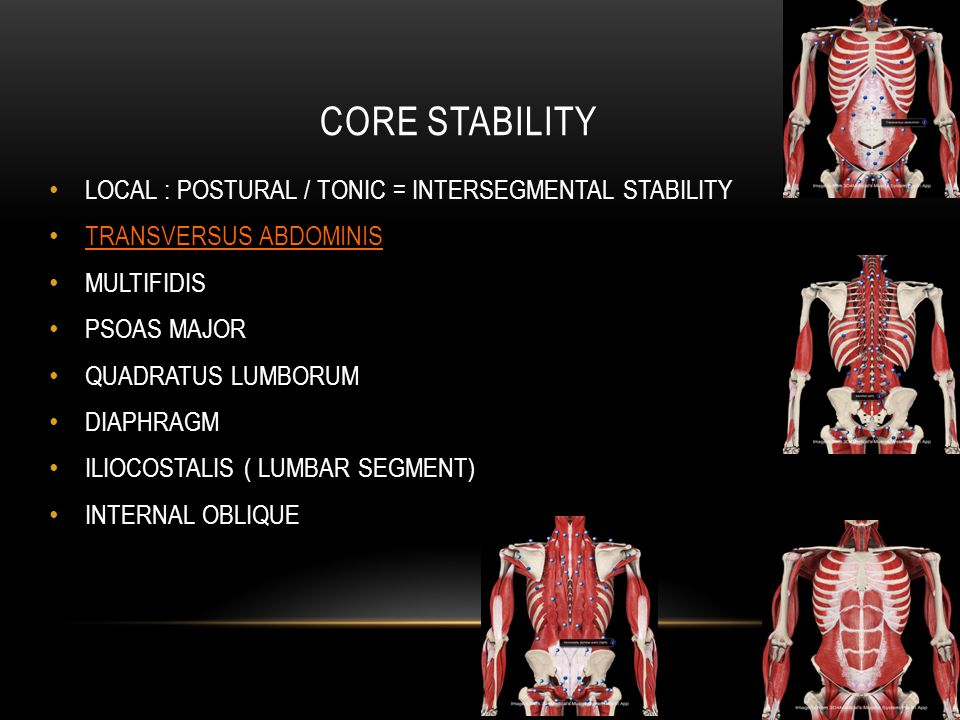 CORE STABILITY LOCAL : POSTURAL / TONIC = INTERSEGMENTAL STABILITY TRANSVERSUS ABDOMINIS MULTIFIDIS PSOAS MAJOR QUADRATUS LUMBORUM DIAPHRAGM ILIOCOSTALIS ( LUMBAR SEGMENT) INTERNAL OBLIQUE