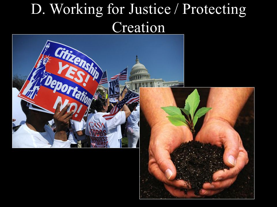 D. Working for Justice / Protecting Creation