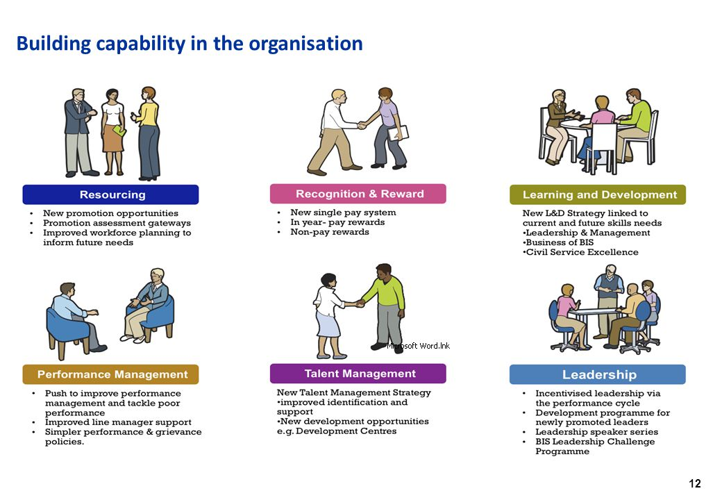 12 Building capability in the organisation