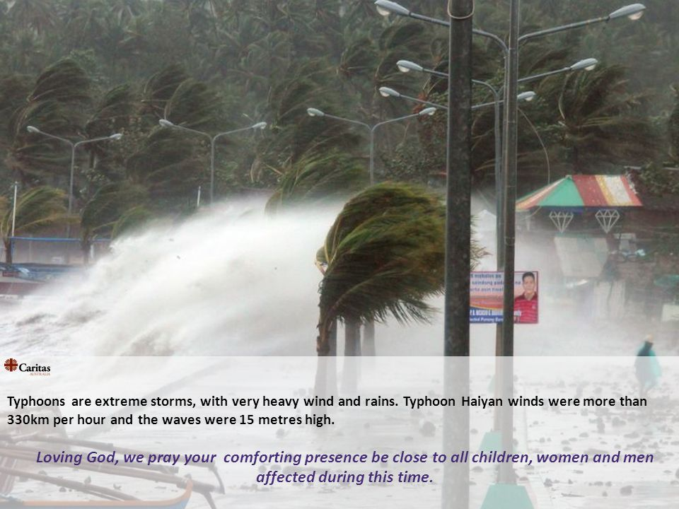 Typhoons are extreme storms, with very heavy wind and rains.