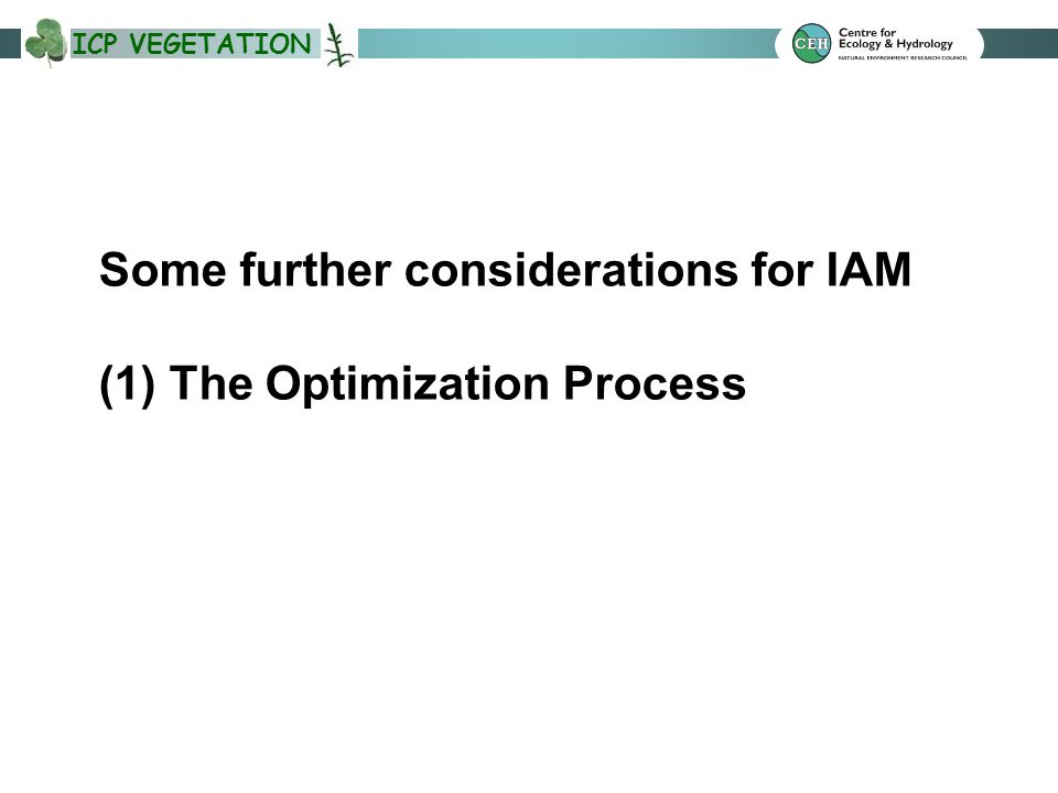 ICP VEGETATION Some further considerations for IAM (1) The Optimization Process
