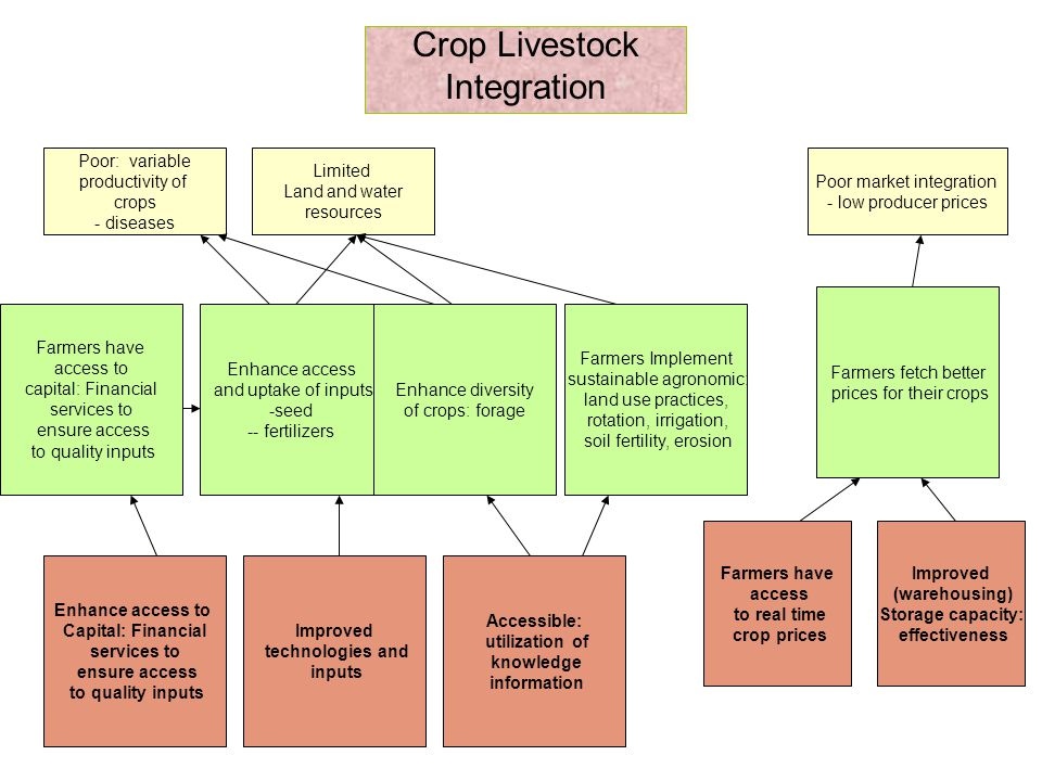 Crop Livestock Integration Poor: variable productivity of crops - diseases Limited Land and water resources Poor market integration - low producer prices Farmers have access to capital: Financial services to ensure access to quality inputs Enhance access and uptake of inputs -seed -- fertilizers Enhance diversity of crops: forage Farmers Implement sustainable agronomic: land use practices, rotation, irrigation, soil fertility, erosion Farmers fetch better prices for their crops Enhance access to Capital: Financial services to ensure access to quality inputs Improved technologies and inputs Accessible: utilization of knowledge information Farmers have access to real time crop prices Improved (warehousing) Storage capacity: effectiveness