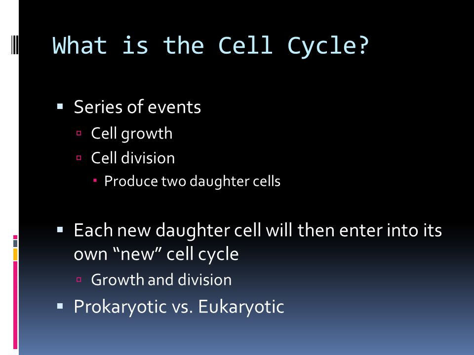 What is the Cell Cycle.