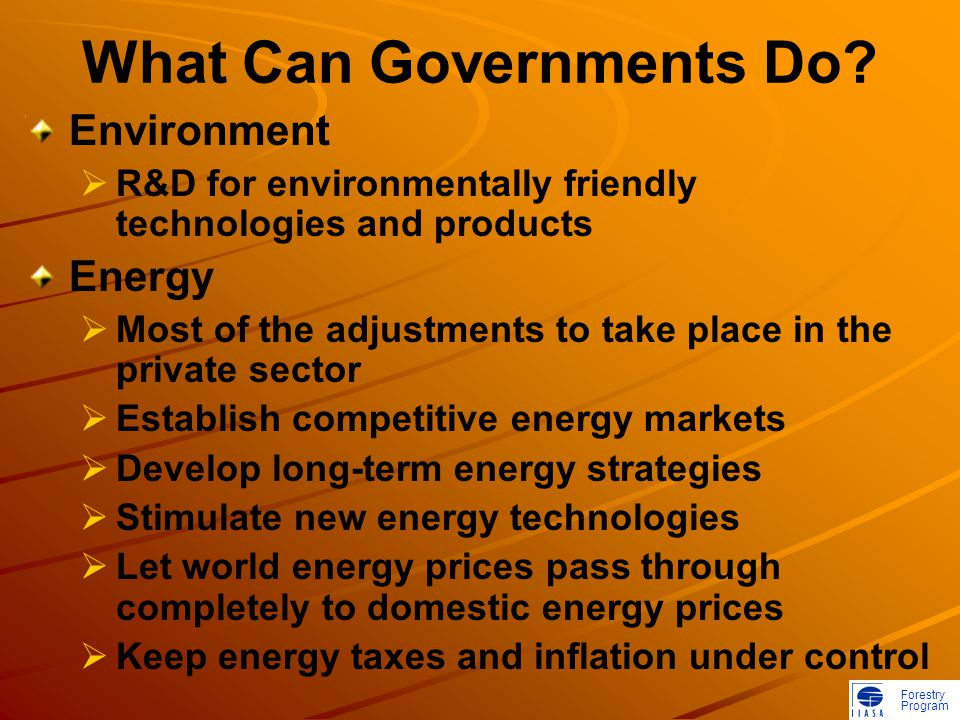 Forestry Program What Can Governments Do.