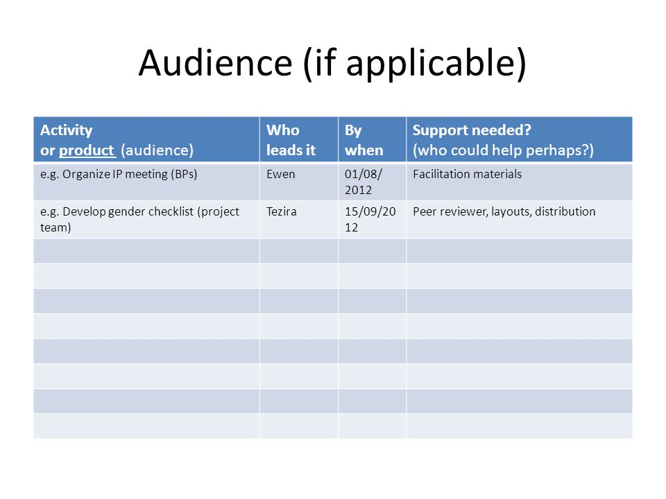 Audience (if applicable) Activity or product (audience) Who leads it By when Support needed.