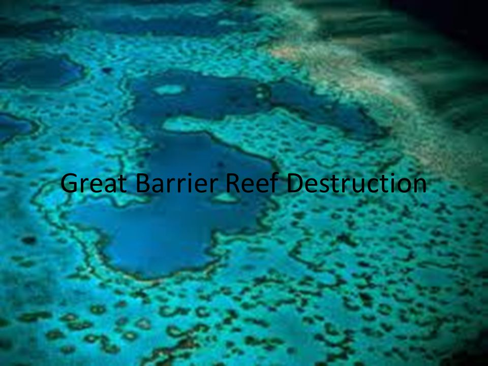 Great Barrier Reef Destruction