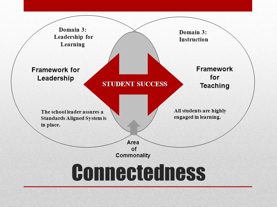 Connectedness Framework for Leadership Framework for Teaching STUDENT SUCCESS Area of Commonality The school leader assures a Standards Aligned System is in place.