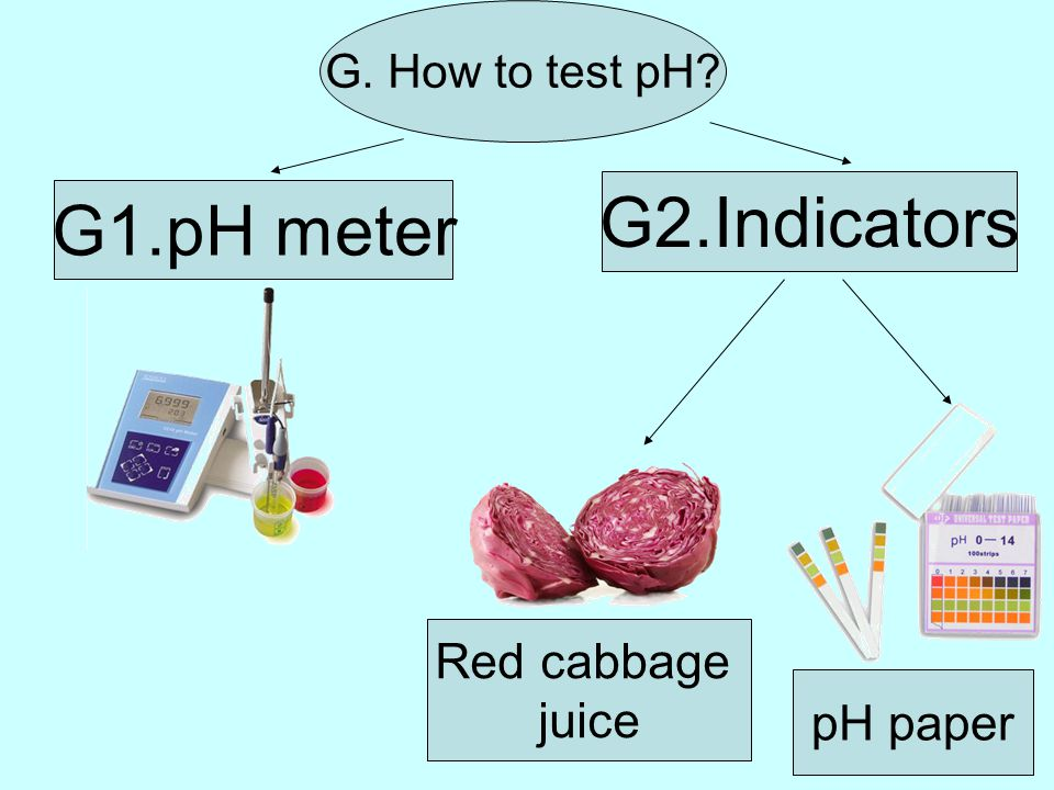 G. How to test pH pH paper G2.Indicators G1.pH meter Red cabbage juice
