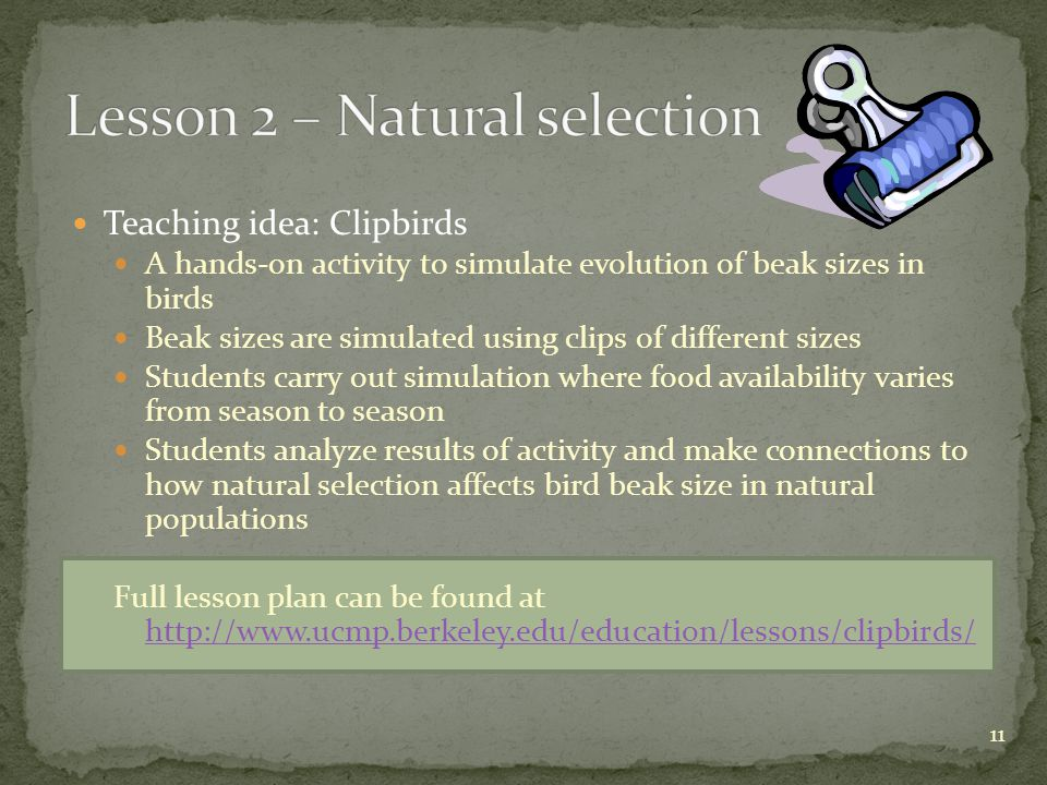 11 Teaching idea: Clipbirds A hands-on activity to simulate evolution of beak sizes in birds Beak sizes are simulated using clips of different sizes Students carry out simulation where food availability varies from season to season Students analyze results of activity and make connections to how natural selection affects bird beak size in natural populations Full lesson plan can be found at http://www.ucmp.berkeley.edu/education/lessons/clipbirds/ http://www.ucmp.berkeley.edu/education/lessons/clipbirds/