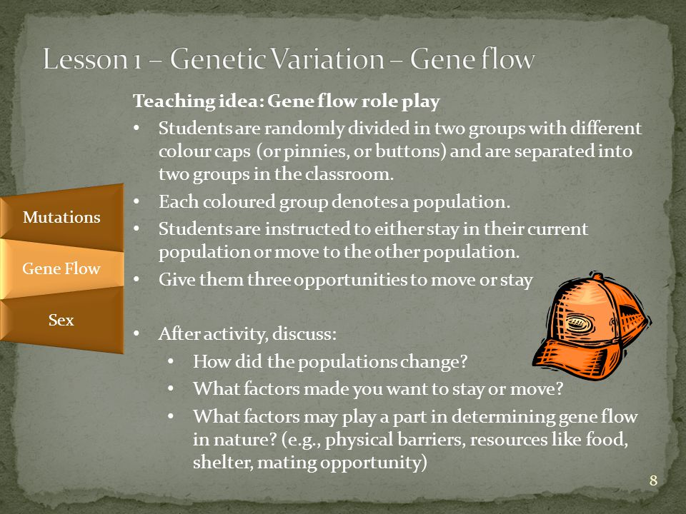 Teaching idea: Gene flow role play Students are randomly divided in two groups with different colour caps (or pinnies, or buttons) and are separated into two groups in the classroom.