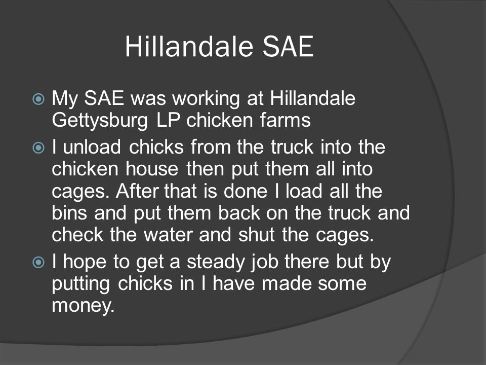 Hillandale SAE  My SAE was working at Hillandale Gettysburg LP chicken farms  I unload chicks from the truck into the chicken house then put them all into cages.