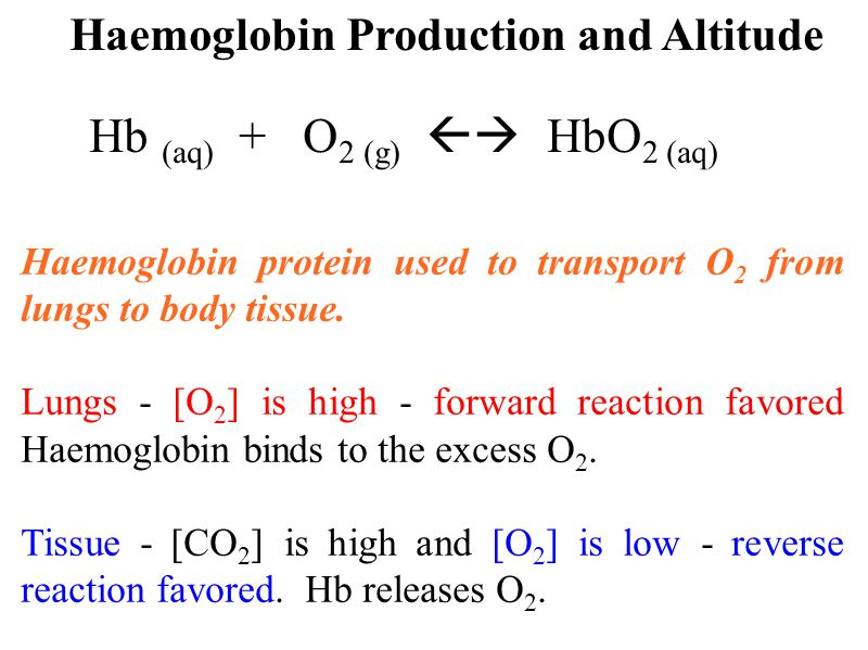 Haemoglobin protein used to transport O 2 from lungs to body tissue.