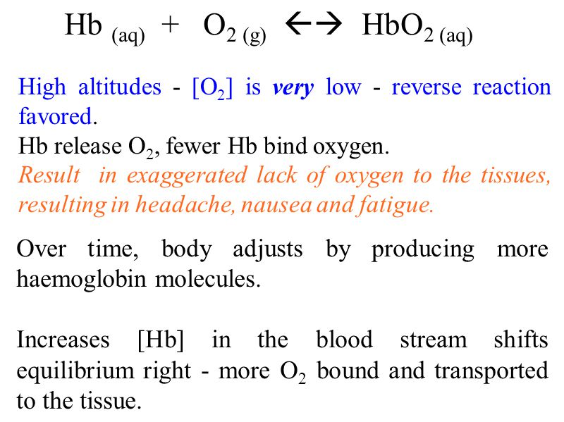 Hb (aq) + O 2 (g)  HbO 2 (aq) High altitudes - [O 2 ] is very low - reverse reaction favored.
