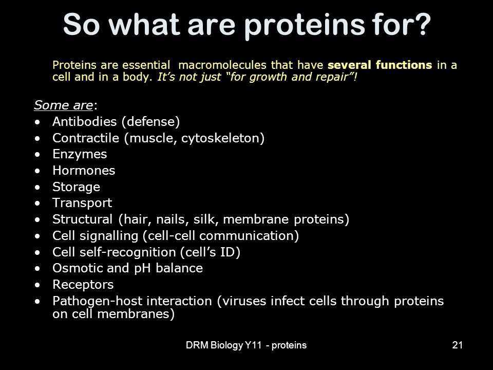 DRM Biology Y11 - proteins21 So what are proteins for.