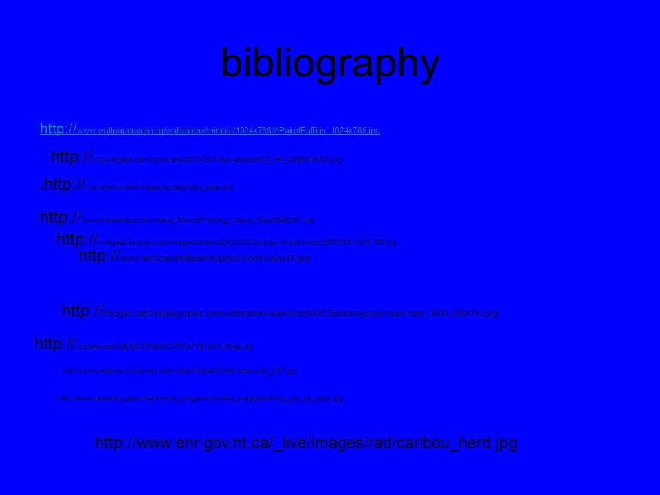 bibliography http:// www.wallpaperweb.org/wallpaper/Animals/1024x768/APairofPuffins_1024x768.jpg http:// imgs.sfgate.com/c/pictures/2010/08/12/sp-outdoors12_PH_0496814025.jpg http:// www.arcticanimallearningzone.com/walrus1.jpg http:// www.hansstrand.com/Hans_Strand/Fighting_Walrus_files/56ft6251.jpg a http:// rt.allayers.com/images/large/grizzly_bear.jpg http:// i.pbase.com/g6/58/276458/2/77847190.0iVUJNgz.jpg http:// images.nationalgeographic.com/wpf/media-live/photos/000/036/cache/grizzly-bear-cubs_3600_990x742.jpg http://www.alaska-in-pictures.com/data/media/2/polar-bear-cub_917.jpg http:// images2.fanpop.com/images/photos/2600000/Caribou-wild-animals-2688080-1024-768.jpg http://www.solarnavigator.net/animal_kingdom/animal_images/Walrus_on_ice_pack.jpg http://www.enr.gov.nt.ca/_live/images/rad/caribou_herd.jpg