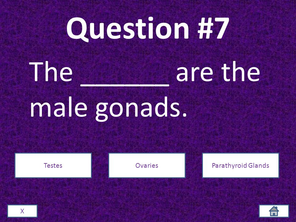 Question #7 The ______ are the male gonads. X TestesOvariesParathyroid Glands