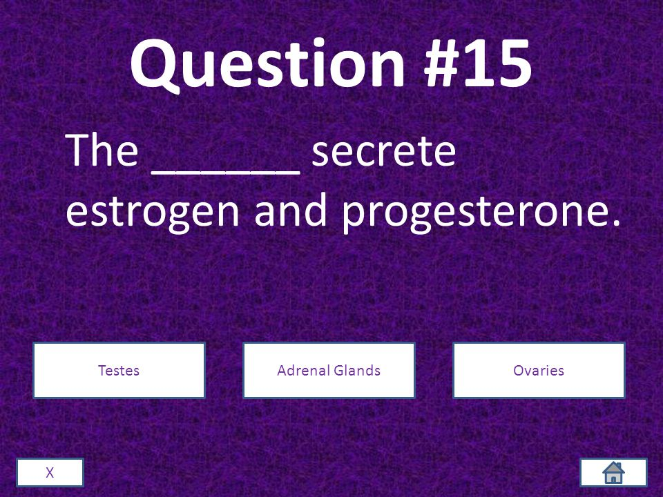 Question #15 The ______ secrete estrogen and progesterone. X TestesAdrenal GlandsOvaries
