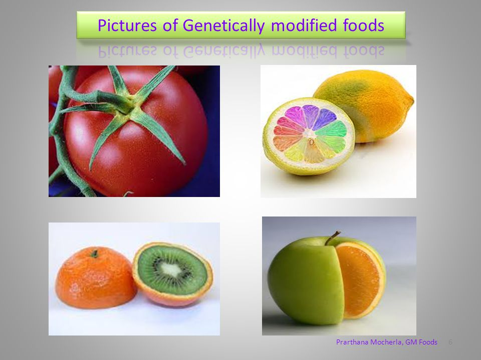 Public opinion on GM foods A large portion of people think that GM foods are good for the future and they should be continued, whereas a lot of people reject GM foods, saying it has bad health impacts.