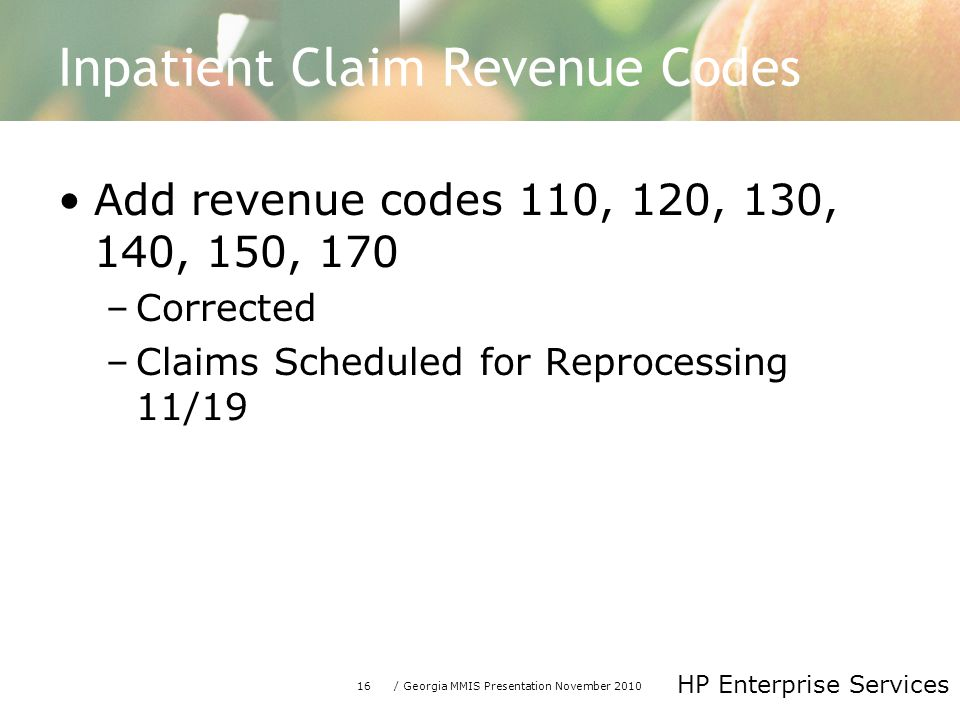 16/ Georgia MMIS Presentation November 2010 HP Enterprise Services Inpatient Claim Revenue Codes Add revenue codes 110, 120, 130, 140, 150, 170 –Corrected –Claims Scheduled for Reprocessing 11/19