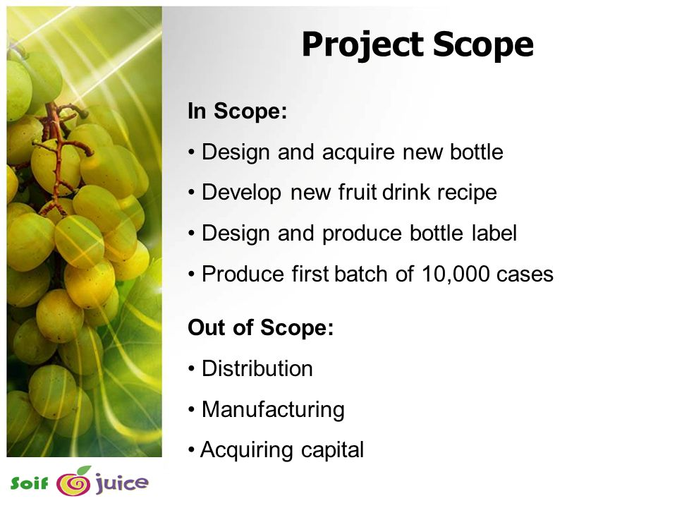 7 Scope Project Scope In Scope: Design and acquire new bottle Develop new fruit drink recipe Design and produce bottle label Produce first batch of 10,000 cases Out of Scope: Distribution Manufacturing Acquiring capital