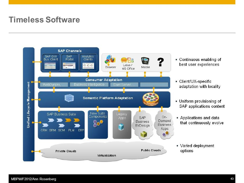 ©2011 SAP AG. All rights reserved.43 MBPM/F2012/Ann Rosenberg Timeless Software