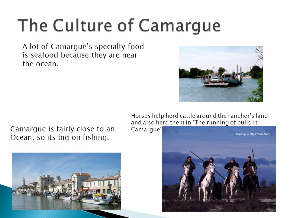 Camargue is fairly close to an Ocean, so its big on fishing.