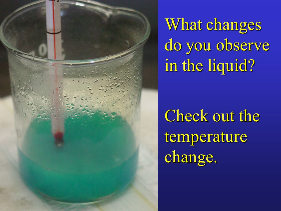 Check out the temperature change. What changes do you observe in the liquid