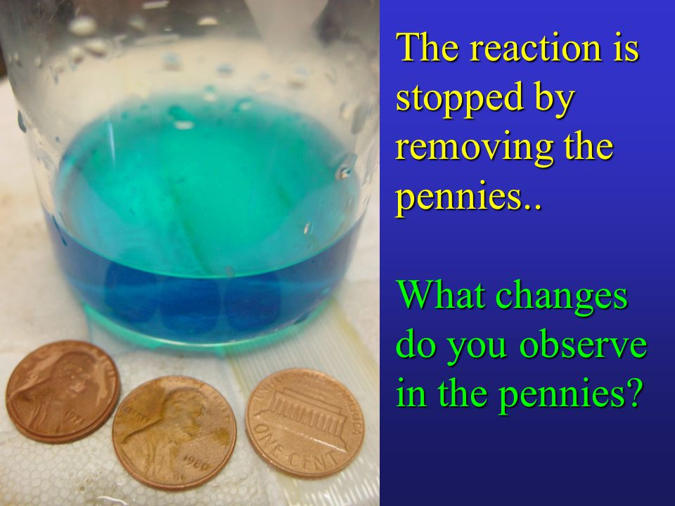 The reaction is stopped by removing the pennies.. What changes do you observe in the pennies