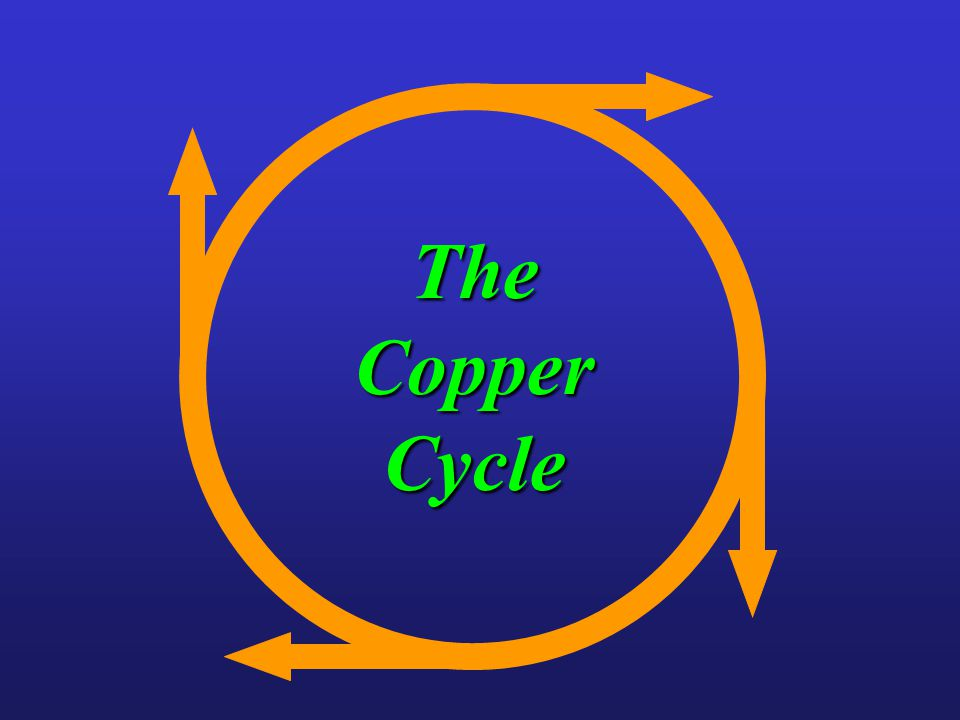 The Copper Cycle