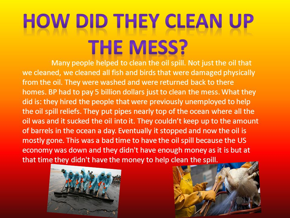 Many people helped to clean the oil spill.