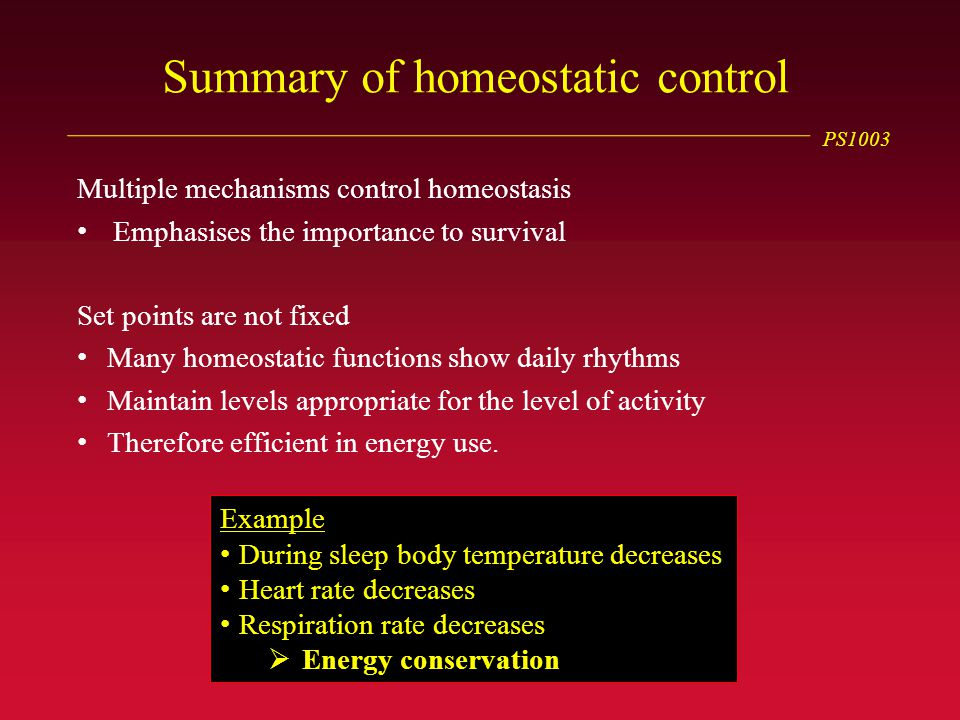 PS1003 Summary of homeostatic control Multiple mechanisms control homeostasis Emphasises the importance to survival Set points are not fixed Many homeostatic functions show daily rhythms Maintain levels appropriate for the level of activity Therefore efficient in energy use.