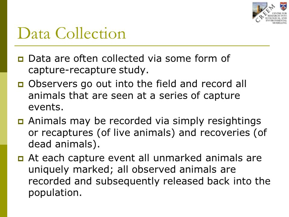 Data Collection  Data are often collected via some form of capture-recapture study.