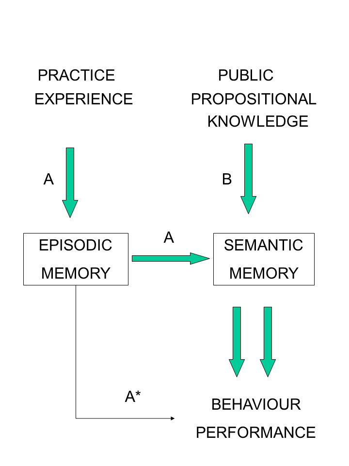 PRACTICE PUBLIC EXPERIENCE PROPOSITIONAL KNOWLEDGE EPISODIC MEMORY SEMANTIC MEMORY BEHAVIOUR PERFORMANCE AB A A*