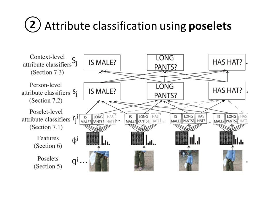 Attribute classification using poselets 2