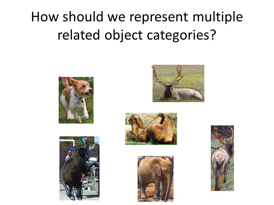 How should we represent multiple related object categories