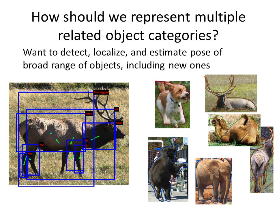 Want to detect, localize, and estimate pose of broad range of objects, including new ones