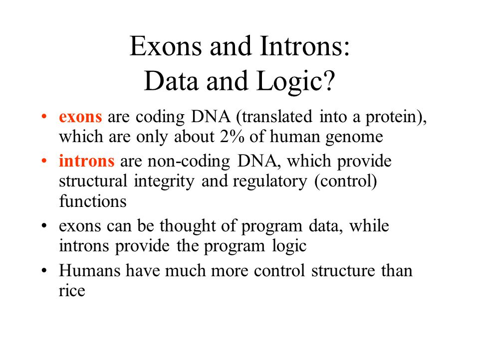 Exons and Introns: Data and Logic.