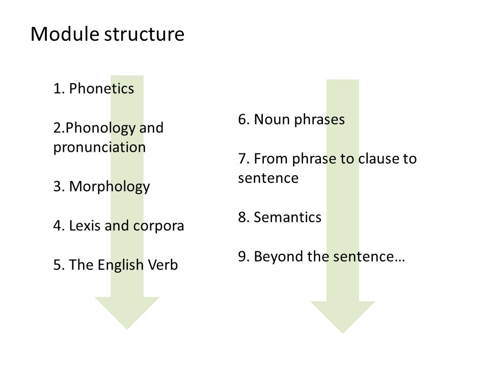 Module structure 1. Phonetics 2.Phonology and pronunciation 3.