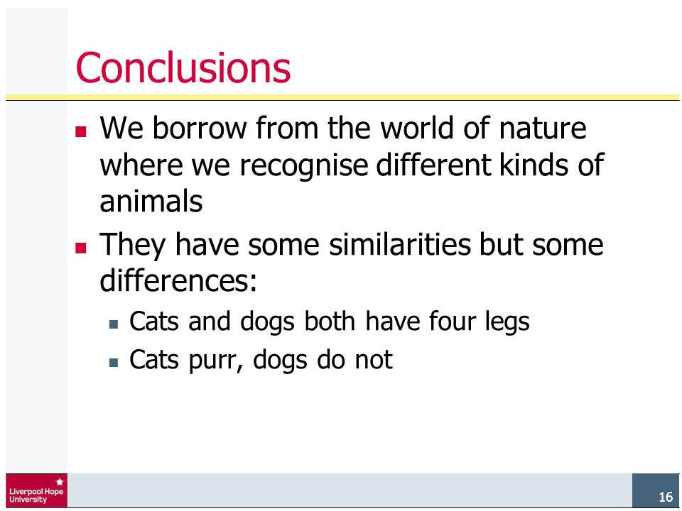 16 Conclusions We borrow from the world of nature where we recognise different kinds of animals They have some similarities but some differences: Cats and dogs both have four legs Cats purr, dogs do not