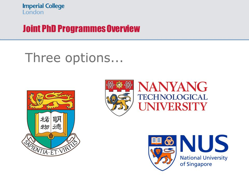 Joint PhD Programmes Overview Three options...