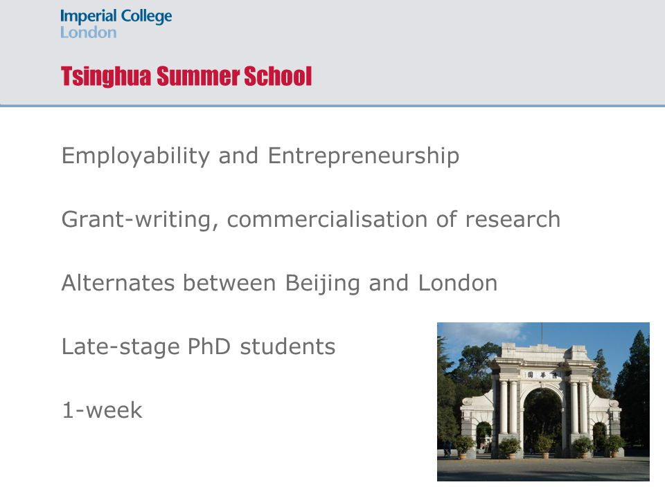 Tsinghua Summer School Employability and Entrepreneurship Grant-writing, commercialisation of research Alternates between Beijing and London Late-stage PhD students 1-week