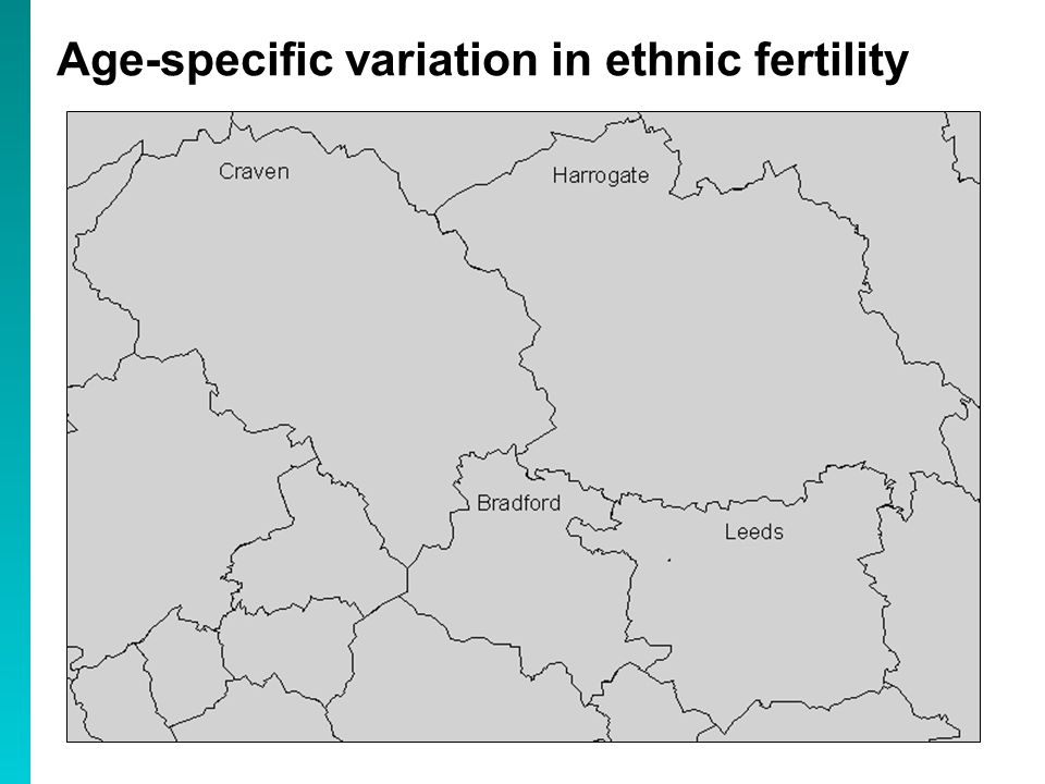 Age-specific variation in ethnic fertility