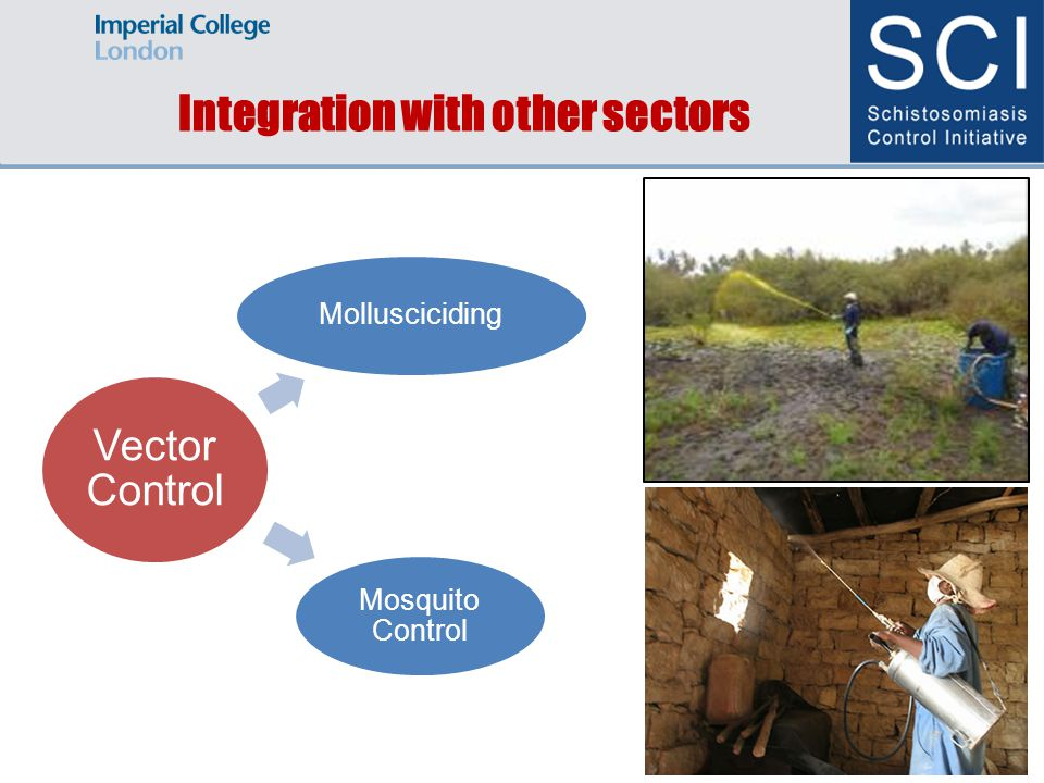 Integration with other sectors Vector Control Mollusciciding Mosquito Control