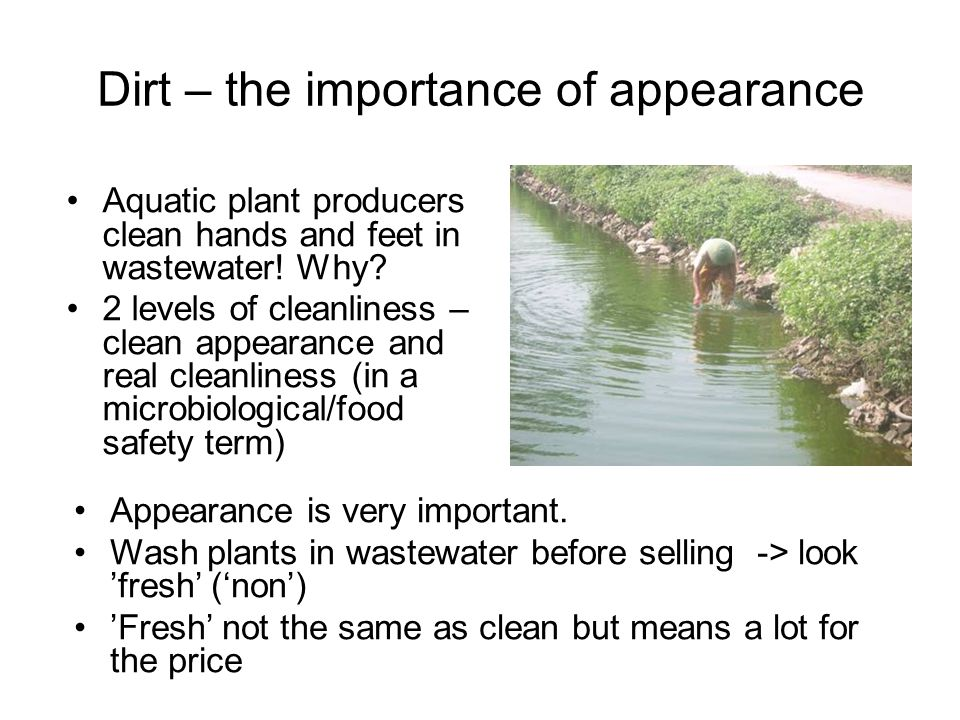 Dirt – the importance of appearance Aquatic plant producers clean hands and feet in wastewater.